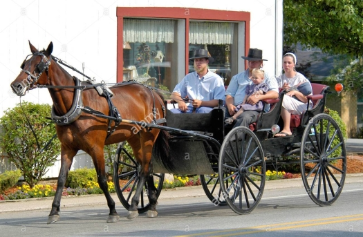 amish-family-riding-in-an-open-horse-drawn-buggy-in-shipshewana-indiana-a0hk1p.jpg