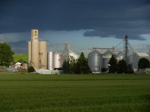 Spangle Grain Elevators