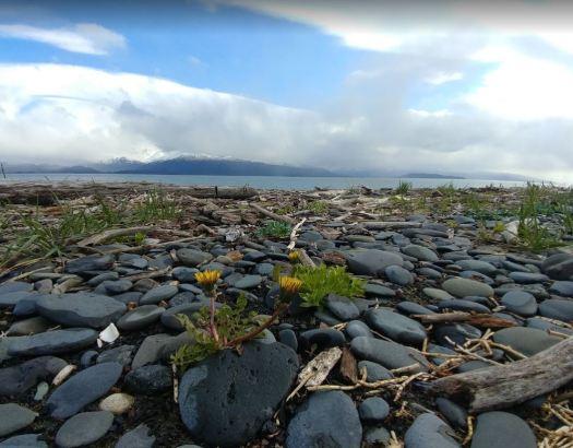 Lands end rocks